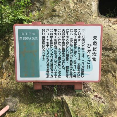 2014-08-18_yosihimi20