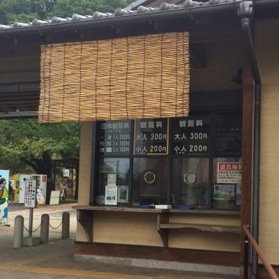2014-08-18_yosihimi4