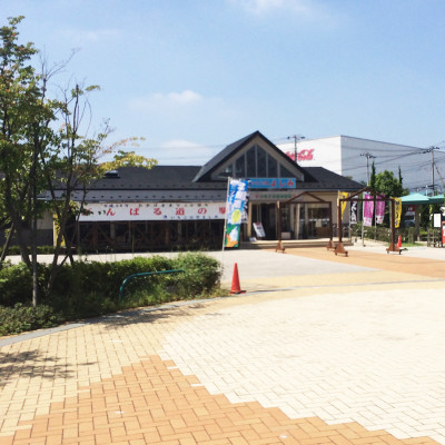2014-08_ichigo2